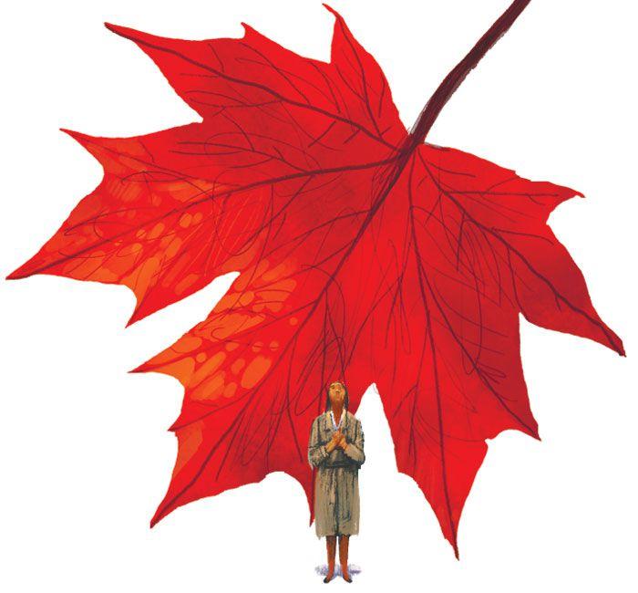 [가슴으로 읽는 동시] 단풍나무에게