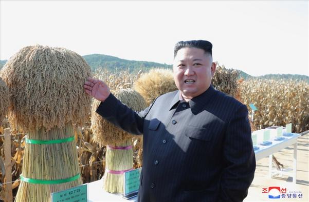 김정은 북한 국무위원장이 지난 5일 스웨덴에서 열린 북미 비핵화 실무협상 결렬 이후 첫 공개활동으로 농업 현장을 방문했다. 조선중앙통신은 9일 '김정은 동지께서 조선인민군 제810부대 산하 1116호농장을 현지 지도했다'고 보도했다. /조선중앙통신·연합뉴스