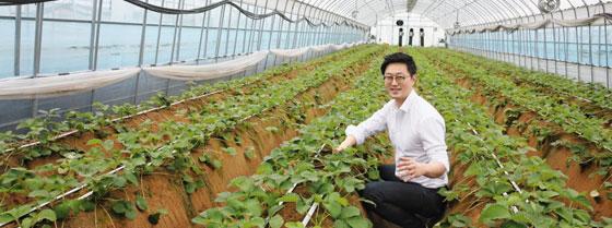 농업인으로 변신한 IT(정보기술) 전문가 안동현 그린랩스 대표가 지난 10일 충남 천안시 입장면에 있는 한 딸기 농장에서 딸기 밭을 따라 이어져 있는 자동 급수 시스템에 대해 설명하고 있다.