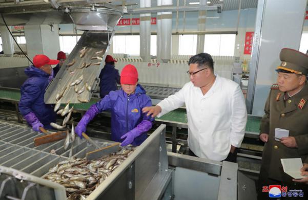 조선중앙통신은 19일 김정은 국무위원장이 '조선인민군 8월25일수산사업소와 새로 건설한 통천물고기가공사업소를 현지지도하시었다'고 보도했다. 김정은이 간부들과 수산사업소를 둘러보고 있다./연합뉴스·조선중앙통신