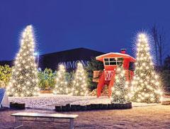 연말을 맞아 대형 크리스마스트리와 조명이 설치된 경기도 이천 '시몬스 테라스'.