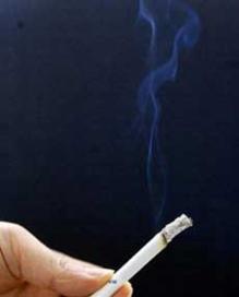 일반 궐련형 담배./조선DB