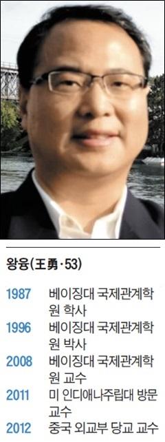 왕융 베이징대 국제관계학원 교수