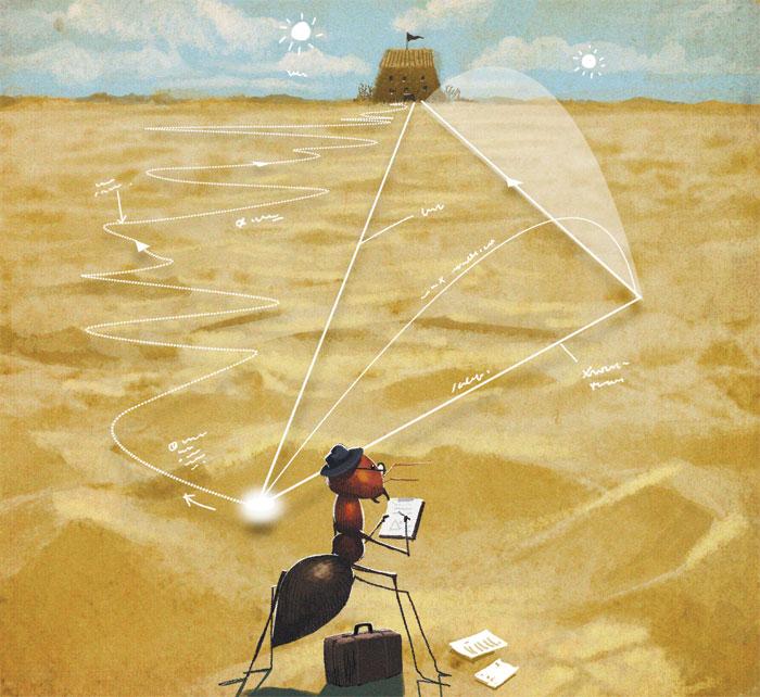 [이영완의 사이언스 카페] 세상에서 가장 정확한 길 찾기… 사막개미한테 한 수 배웠다