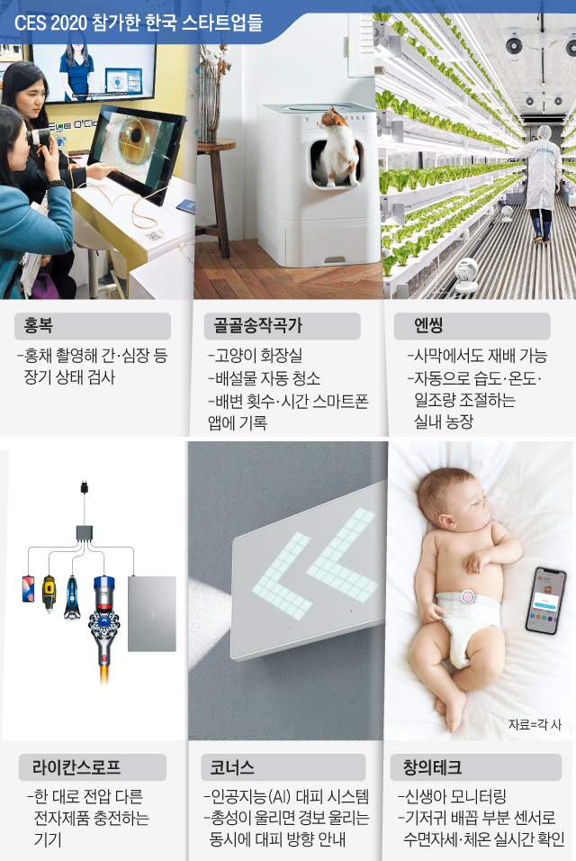 CES 2020 참가한 한국 스타트업들 그래픽