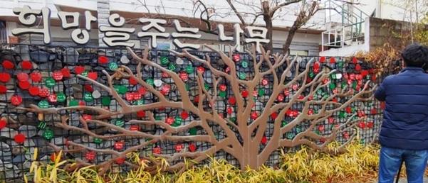전북 전주시 노송동 주민센터에 나무 조형물인 '희망을 주는 나무'가 설치돼 있다. 지난달 30일 '얼굴 없는 천사'가 이곳에 성금을 두고 갔으나 미리 알고 노린 일당이 훔쳐 달아났다. /연합뉴스
