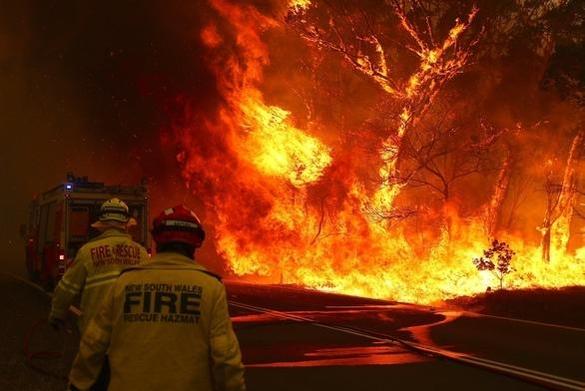 호주 산불 현장의 모습. /트위터 캡처