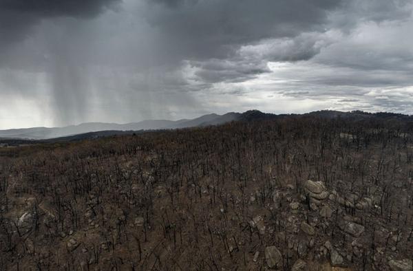 비 내리기 시작하는 호주 산불 지역./BBC 날씨 트위터 캡처