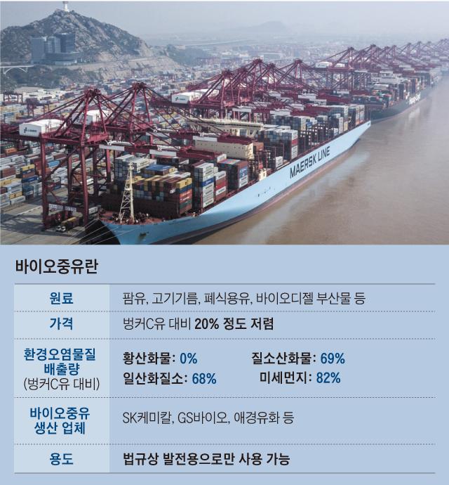 세계 1위 해운사인 덴마크 머스크의 컨테이너선이 중국 상하이 항구에 정박한 모습.