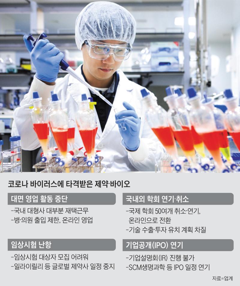 코로나 바이러스에 타격받은 제약, 바이오 정리 표