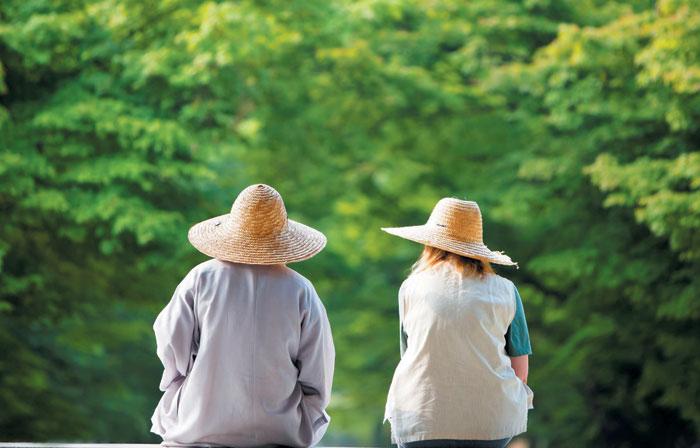 한국불교문화사업단은 코로나 일선에서 활약한 의료진과 관련 공무원들의 심리 방역을 위해 산사에서 휴식할 수 있는 템플스테이를 지원한다. /한국불교문화사업단