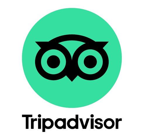 해외여행경험자들에게 친숙한 여행정보회사 트립어드바이저 로고. 올빼미의 얼굴을 형상화했다/트립어드바이저 홈페이지