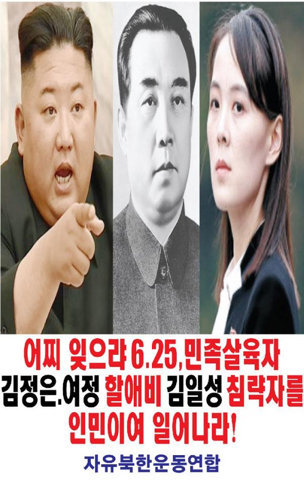 자유북한운동연합이 22일 밤 살포한 대북전단 포스터/자유북한운동연합