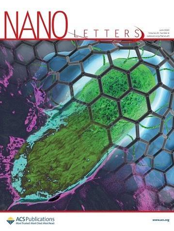 육종민·한영기 교수팀의 연구성과가 표지논문으로 실린 '나노 레터스(Nano Letters)' 6월호의 표지 사진./KAIST 제공