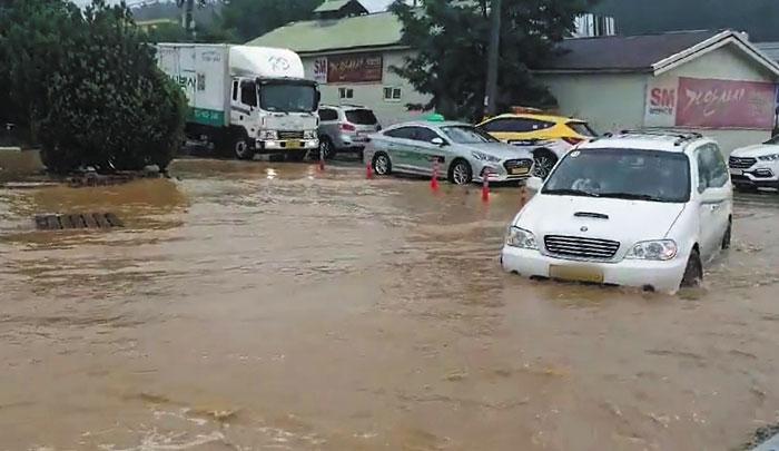30일 오전 폭우가 쏟아진 강원도 강릉에서 차량들이 도로 위에 가득 고인 빗물을 헤치며 서행하고 있다.