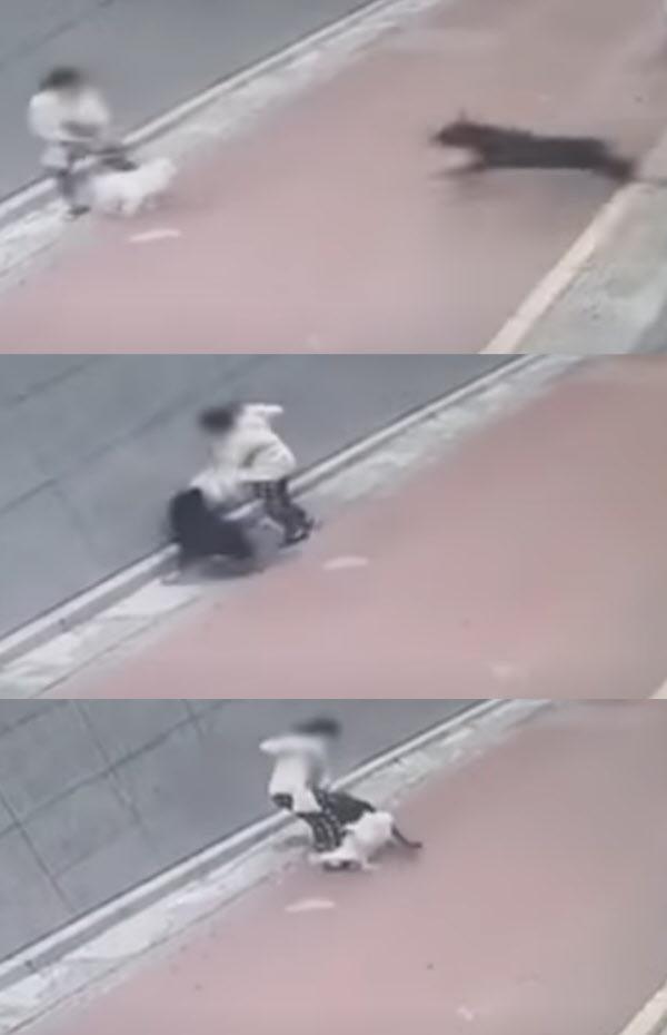 /연합뉴스TV 캡처