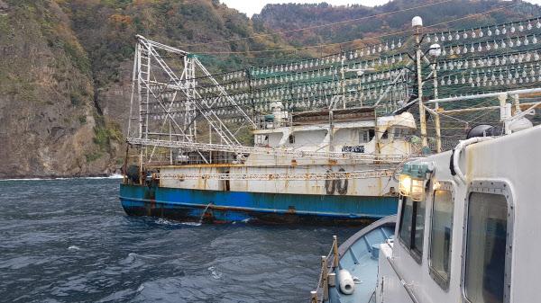 중국의 한 오징어잡이 배가 울릉도 인근 우리 해역에 닻을 내리고 있는 모습. /The Outlaw Ocean Project