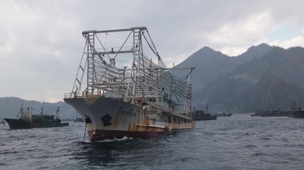 울릉도 인근 우리 해역에서 포착된 중국 오징어잡이 어선의 모습. /The Outlaw Ocean Project