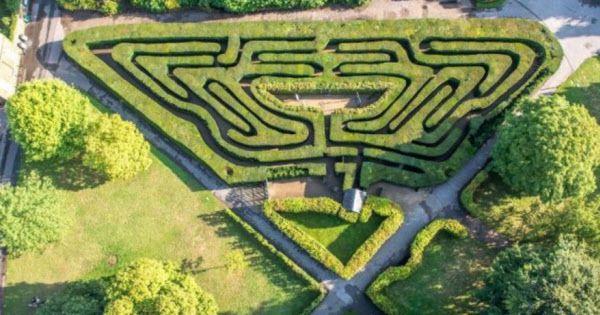 영국 햄튼 코트 궁전의 정원 미로 ./Wikimedia