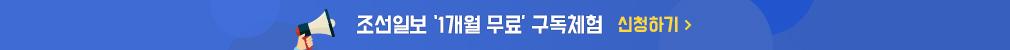 조선일보 구독체험